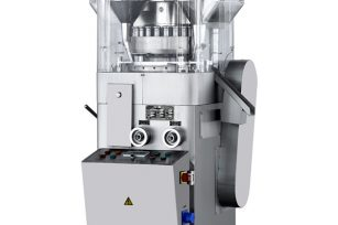 ZPW-21B Rotary Tablet Press